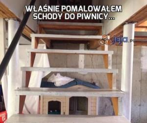 Właśnie pomalowałem schody do piwnicy...