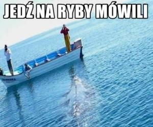 Jedź na ryby...
