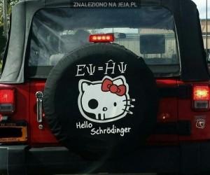 Hello Schrodinger