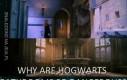Dlaczego łazienki w Hogwarcie są tak niebezpieczne?