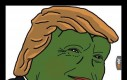 Oto rzadki Pepe Trump
