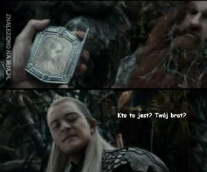 Jaka jest różnica pomiędzy elfami a krasnoludami?