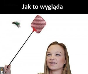 Kiedy próbuję zabić muchę z ziomkami