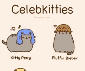 Koty-Celebryci
