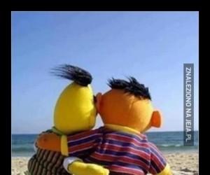Bert i Ernie z przyjemnością oglądają
