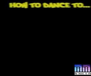Papugi uczą tańca