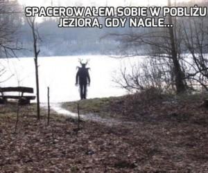 Spacerowałem sobie w pobliżu jeziora, gdy nagle...