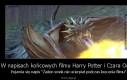 W napisach końcowych filmu Harry Potter i Czara Ognia