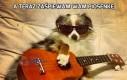 A teraz zaśpiewam Wam piosenkę