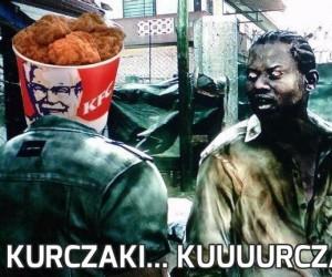 Kurczaki... kuuuurczaki!