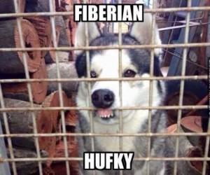 Fufky?