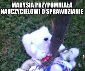 Marysia, ty bulwo!