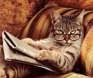 Zwierzęta też chcą się uczyć