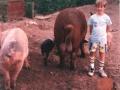 U rodzinki na wsi
