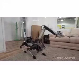 Ponętny robot