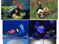 Zwierzęta: bajka vs rzeczywistość