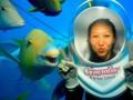 Fotogeniczna ryba
