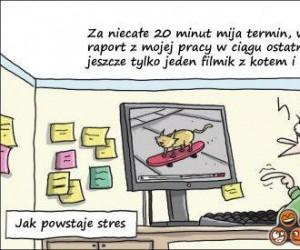 Tak powstaje stres