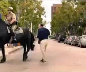 Uważaj, bo koń ci odda!