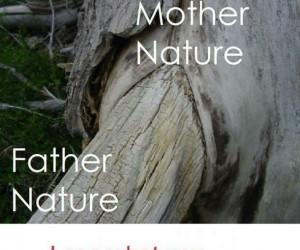 Co stworzyła matka natura?