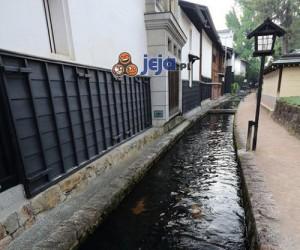 Karpie Koi w Japonii