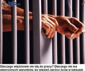 Więźniowie powinni pracować!