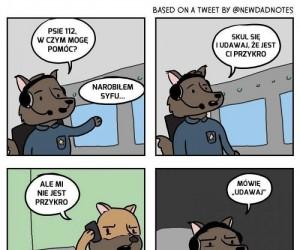Z życia psa