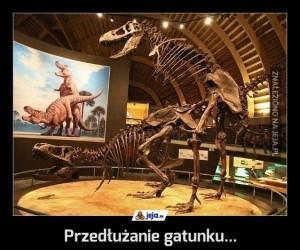 Przedłużanie gatunku...
