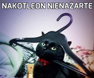 Nakotleon Nienażarte