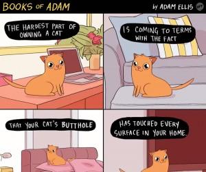 Najgorsza rzecz w posiadaniu kota