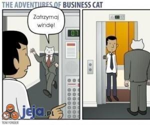 Zatrzymaj windę!