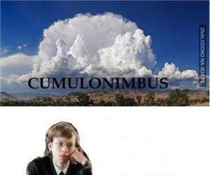 Gimbus cumulonimbus