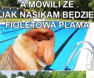 Janusz na basenie