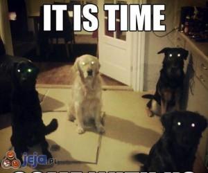Już czas, chodź z nami