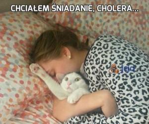 Chciałem śniadanie, cholera...