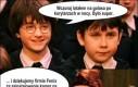 Harry na golasa