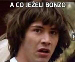 A co jeżeli Bonzo