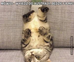 Mówili - wyjedź do Australii, będzie fajnie