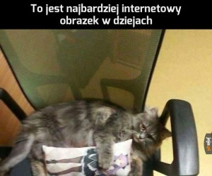Internet w pigułce