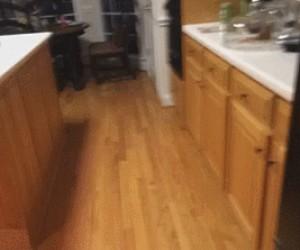 Gdy mój pies usłyszy, że jestem w kuchni