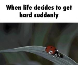 Kiedy całe Twoje życie nagle zaczyna się walić