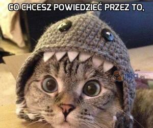 Coś Ci zjada głowę, koteł