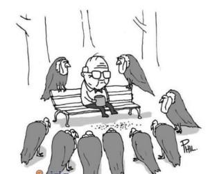 Dziwne ptaki w parku
