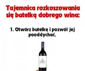 Jak rozkoszować się winem