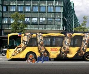 Oryginalna reklama Zoo