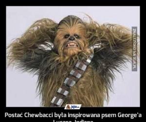 Postać Chewbacci była inspirowana psem George'a Lucasa, Indianą