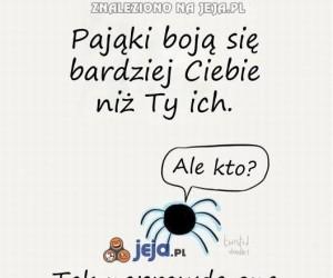 Zapoznam Cię z pająkami...