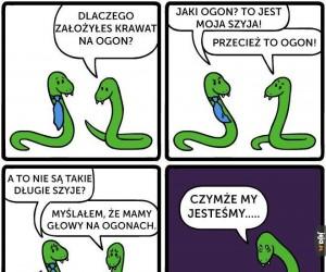 Wężowe problemy