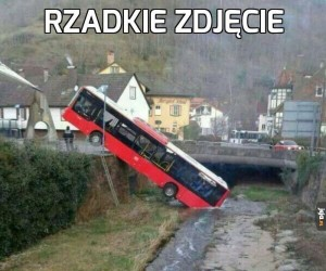 Spragniony autobus