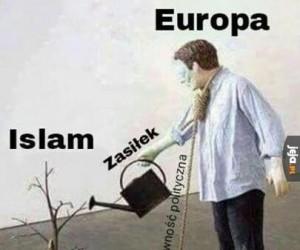 Współczesny sposób na zagładę Europy